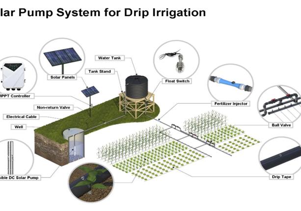 pump-for-irrigation
